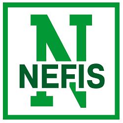 Нефис